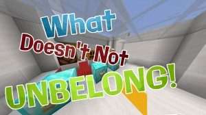Скачать What Doesn't Not Unbelong! для Minecraft 1.14.1